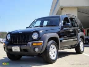 Jeep Liberty Black Jeep Liberty 2004 Image 290