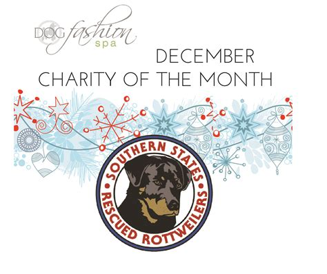 southern states rescued rottweilers fashion gives back charities we care
