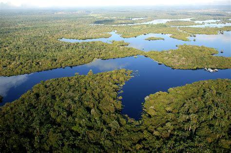 el rio de la 8401378915 191 cu 225 ndo se form 243 el r 237 o amazonas