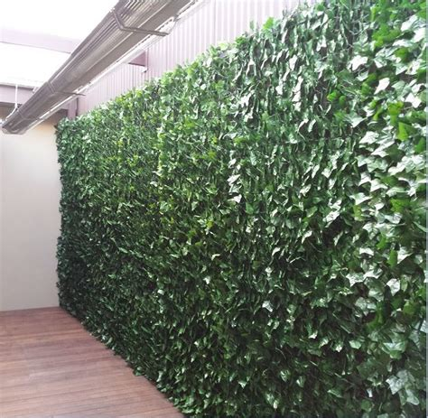 Efeu Wand by Artificial Wall Screening Hedge Silk Trees And