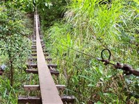 maui swinging bridges cross if you dare on pinterest suspension bridge rope