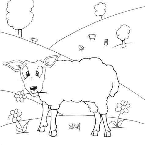 free baa baa black sheep printable coloring pages