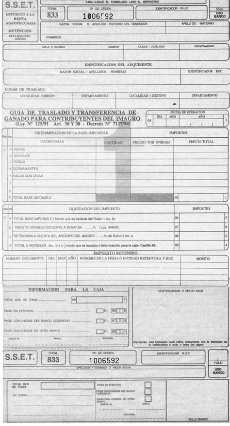 guia llenado de formulario 110 v3 en el facilito guia llenado de formularios iva it y otros bolivia form833 jpg