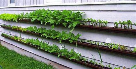 Gutter Vertical Garden Notconcept Vertical Hydro Wine Garden Notcot