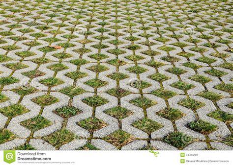 Floor Plan Creater grass pavement royalty free stock photos image 34708248