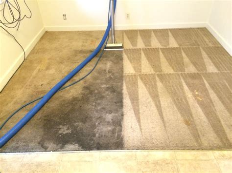 rug cleaning near me pro tech carpet cleaning 32 photos 23 reviews carpet cleaning 226 sw 131st st burien