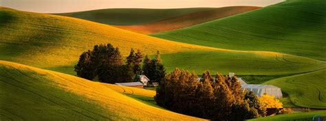 Farm Houses Download Wallpaper Trees And Houses In The Hills 3200 X