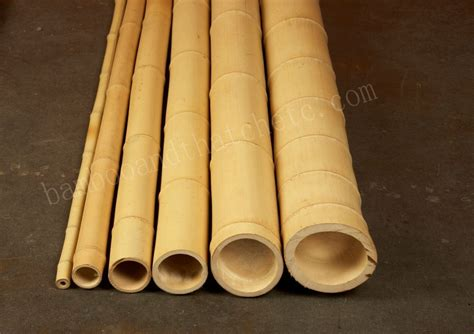 bamboo section bamboo poles bamboo thatch etc