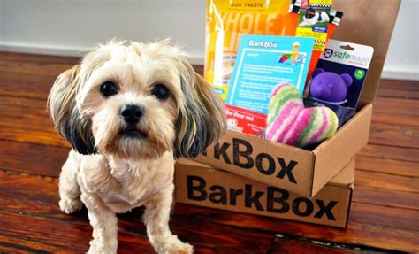 barkbox for dogs from to puppies matt meeker of barkbox