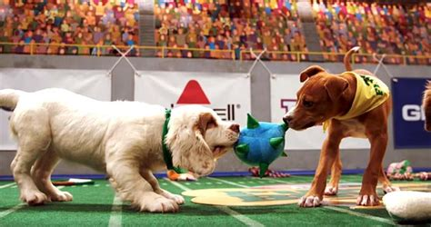 animal planet puppy bowl not into football the puppy bowl this sunday instead top tips