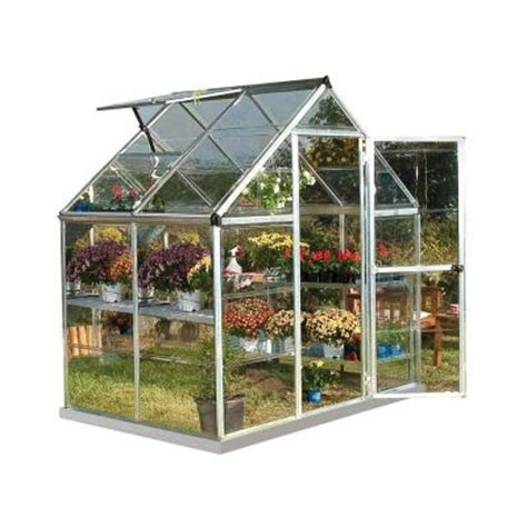 Small Greenhouse Home Depot Palram Harmony 6 Ft X 4 Ft Polycarbonate Greenhouse In