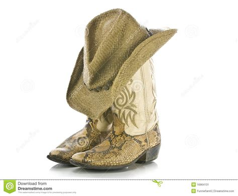 boot hat snakeskin boots and hat isolated stock image image 16964131