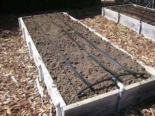 drip irrigation for raised beds raised bed drip irrigation system garden pinterest