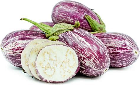 graffiti eggplant information recipes  facts