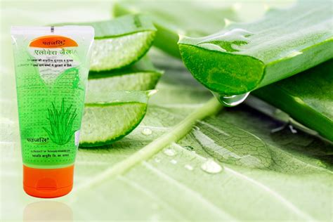 Fashion Popular Aloe Vera by Patanjali Aloe Vera Gel Review Benefits And Uses