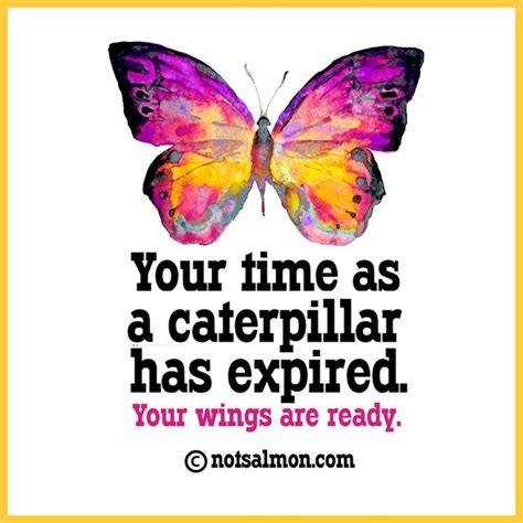 Spaker Hello Wings your time as a caterpillar has expired your wings are