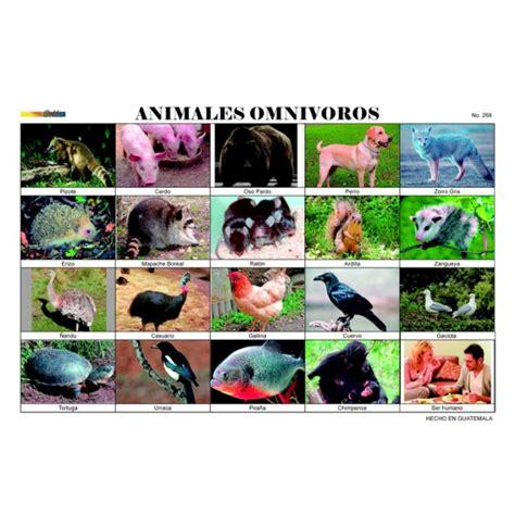 figuras de animales para imprimir imagenes animales omnivoros para imprimir imagui