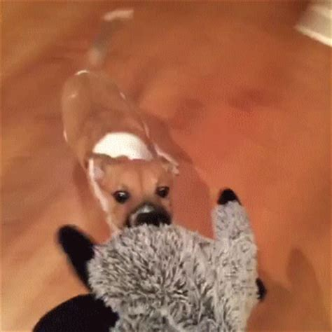 war dogs laugh war dogs gif find on giphy