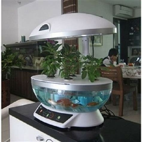 smart garden aquaponics system hydroponic agricultural