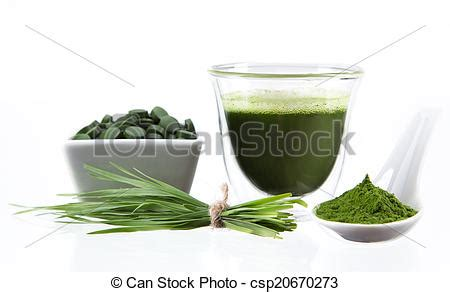 Chlorella Detox While by Picture Of Detox Barley Chlorella Superfood