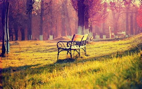 beautiful bench beautiful bench wallpaper 31641 1440x900 px hdwallsource com