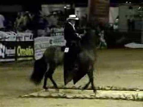 caballo de la sabana youtube fernando rey en la copa america cali 2005 rey de la