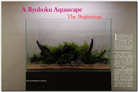 Aquascaping Magazine by Aquascaping World Magazine A Ryoboku Aquascape