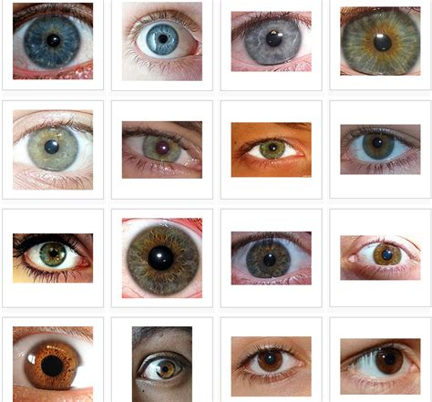 rarest color most eye color some facts about eye color