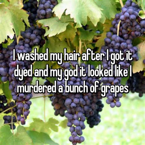 hornets and grapes five stories of encounters in a mediterranean books 20 hair dye horror stories