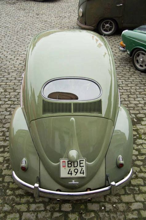 oval rear window vw small european cars pinterest rear window  window