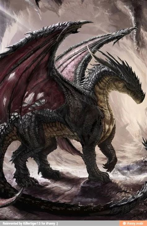 best 25 black dragon ideas on pinterest dragons dragon