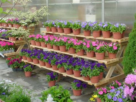 garden centre display benches 17 best images about outdoor exhibit display ideas on