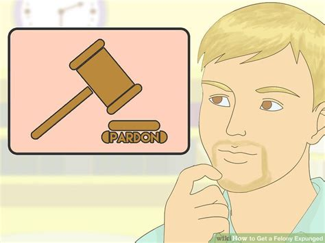 How To Get A Felony Expunged From Your Record How To Get A Felony Expunged 15 Steps With Pictures Wikihow