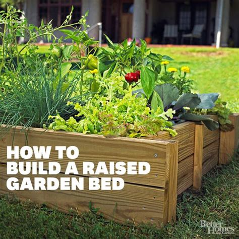 how to build raised beds how to build a raised bed