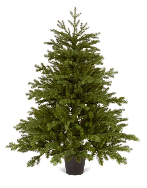 slim bayberry spruce christmas tree christmas decore