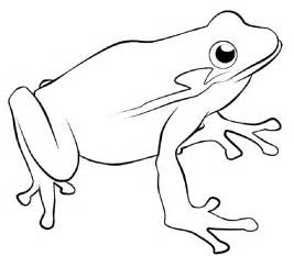 tree frog coloring pages coloring home