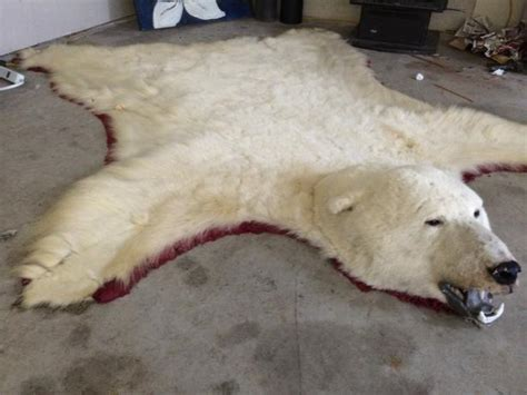 Polar Rugs For Sale by Polar Rug Saanich Sidney