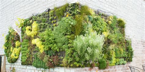organice your home vertical garden organice your