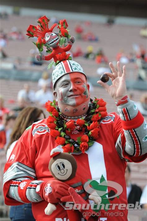 ohio state buckeye fan 17 best images about ohio state buckeyes fans on
