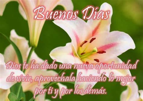 imagenes flores buenos dias tarjetas de buenos d 237 as con flores muy hermosas