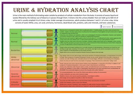 Bristol Stool Scale Poster by Urine Hydration Analysis Chart Bristol Stool Form