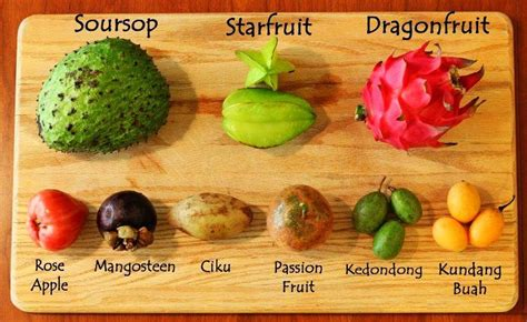 6 fruits mentioned in the quran sheikh waleed abdulhakeem ash shams