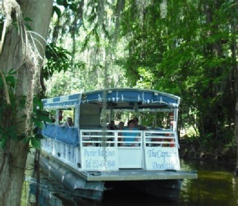 boat tour mount dora premier boat tours mount dora all you need to know