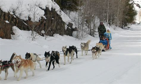 sledding colorado vail colorado sledding sled tours alltrips