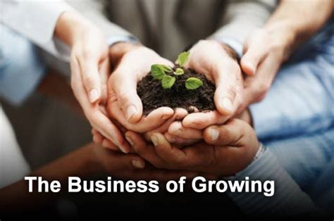challenges of growing a business the top nine challenges of growing a business and how to