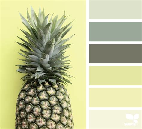 pineapple palette design seeds