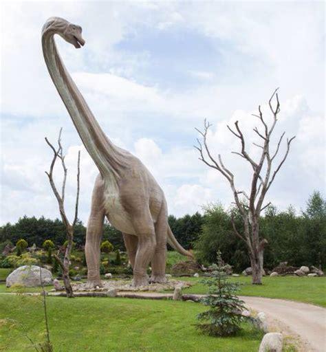 wann schneidet bã ume pixwords das bild mit dinosaurier park baum b 195 164 ume