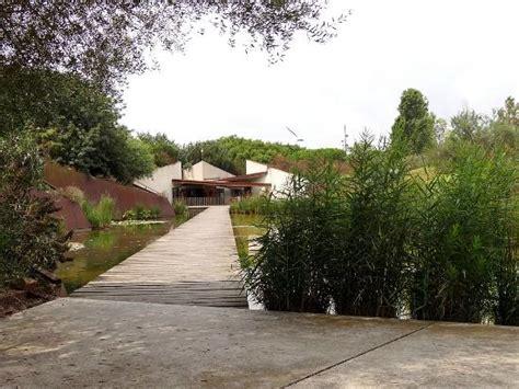 Jardi Botanic De Barcelona Parc De Montjuic Picture Of Montjuic Botanical Gardens