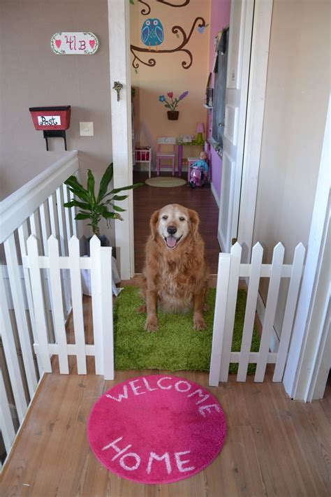 dog decorations for home 17 best ideas about dog bedroom on pinterest dog rooms