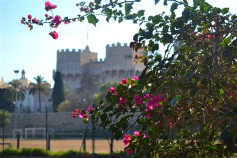 Gamis Valencia Dusty exploring the turia gardens in valencia travel